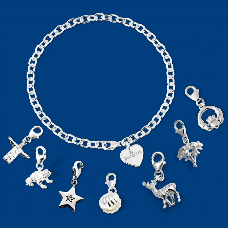 All charms and bracelet